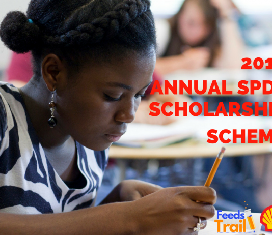 2017 Annual SPDC Scholarship Scheme – Announcement